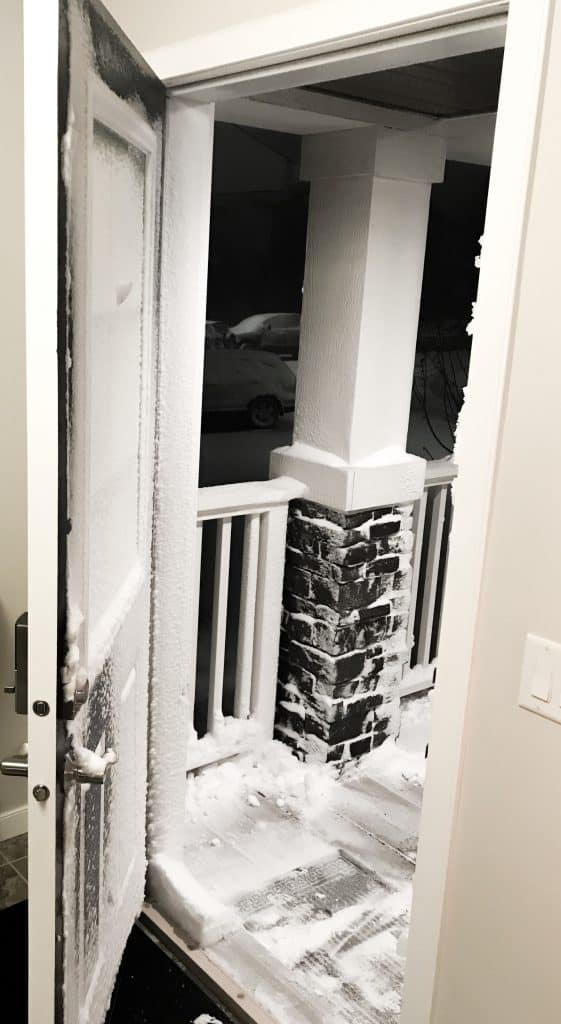 winter snow coated door