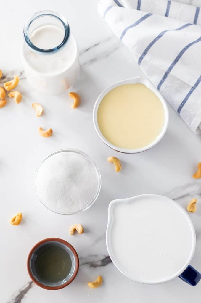 all of the ingredients to make coconut cashew vanilla ice cream