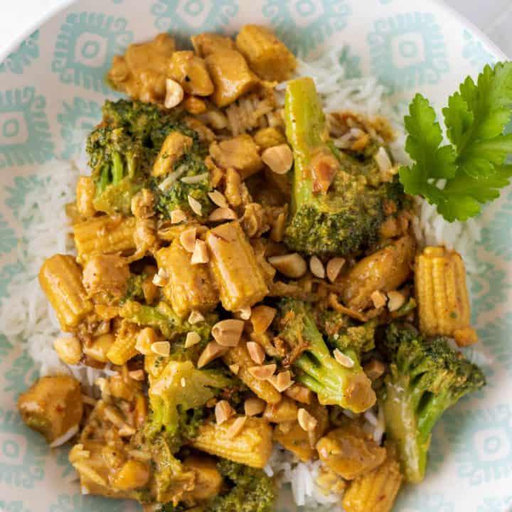 Spicy Peanut Chicken Satay