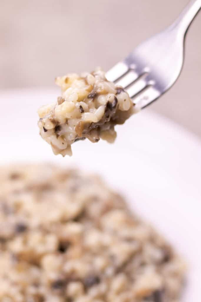 showing the creaminess of the risotto on a fork.