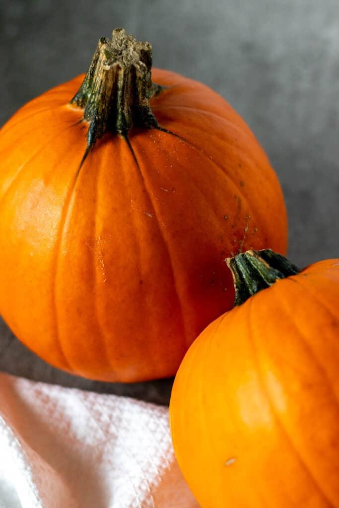 a sugar pie pumpkin