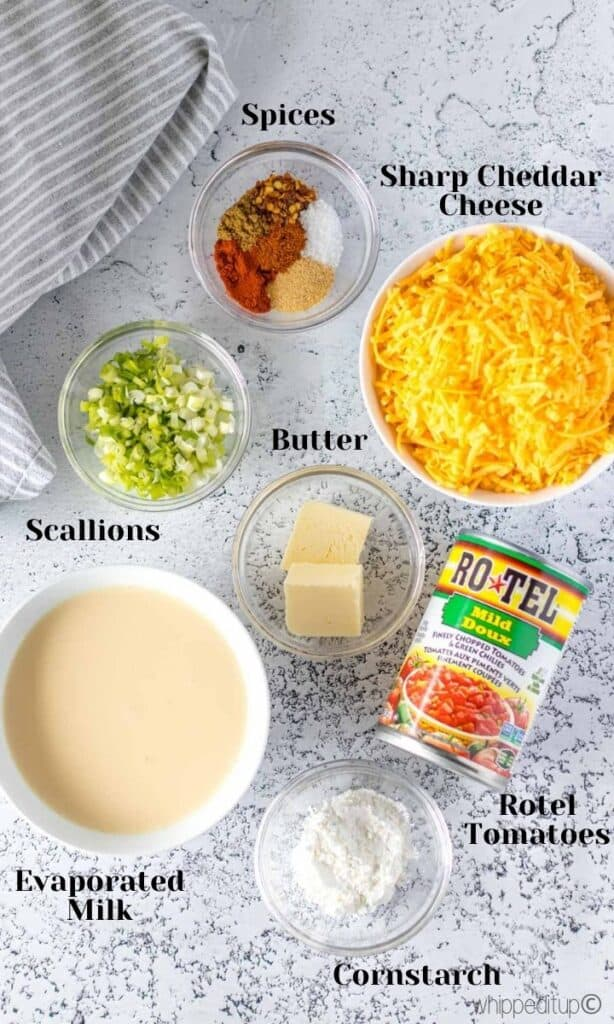 all of the ingredients required to make queso cheese dip